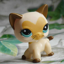 Littlest pet shop heart shade face Cat toy LPS # 3573 mini Action Figures