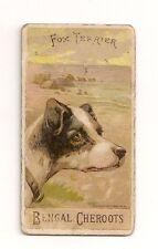 1890 H. Ellis & Co. N375 Breeds Of Dogs Fox Terrier Tobacco Card