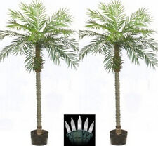 Two 7 foot Artificial Phoenix Palm Trees In Pots with Christmas Lights Date Sago