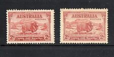 AUSTRALIA 1934 -CENTENARY OF JOHN MACARTHUR -2D RED MERINO SHEEP  MLH
