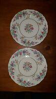 Bavaria Mayfair Vintage Thomas Ivory Pair of Floral Dinner Plates