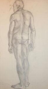 Vintage pencil drawing man nude portrait