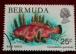 Bermuda:1978 Wildlife 25 C. Rare & Collectible Stamp.