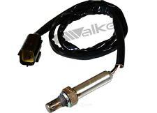 NEW WALKER 250-24817 OE STYLE OXYGEN SENSOR FOR JAGUAR VANDEN PLAS XJ6 XJR XJS