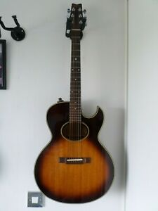 Washburn Woodstock EA20 Festival 1978 acoustic guitar mahogany Hard Case