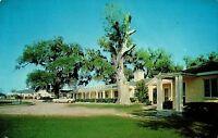 Gardens Corner Court and Restaurant Beaufort, SC  Postcard, Posted