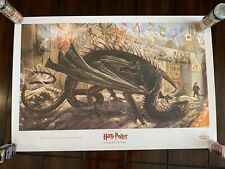 Harry Potter And The Goblet Of Fire 30x20 Scholastic Jim Kay Sdcc Exclusive Htf
