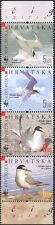 Croatia 2006 WWF/Little Terns/Sea Birds/Nature/Conservation/Wildlife 4v (n43778)
