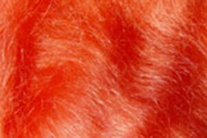 2x1g Poil MOHAIR dubbing ROUGE décoration creazione fly tying red
