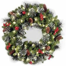 National Tree Pre-Lit 24Inch Crestwood Spruce Wreath with 50 Clear Lights