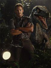 "Jurassic World - Chris Pratt Dinosaur Moster Movie Poster 17x13"" J12"