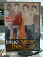 BLUE - A YEAR IN THE LIFE OF...  DVD NUOVO