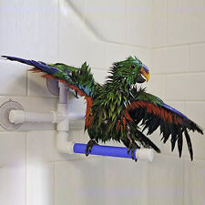 Pet Birds Suction Cup Toys Paw Grinding Stand Bath Shower Perches Parrot Fancy