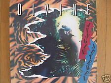 Divine Jungle Jezebel 80's TRASH DISCO LP L319