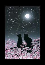 Gato De Impresión explorando las constelaciones por me garmashova