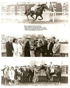 """1965 - Arkansas Derby Winner - SWIFT RULER - 3 Photo Composite - 8"""" x 10"""""""