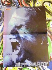 JEFF HARDY & LAYLA -WRESTLING Doppel Poster A3(59x22 Plakat-W1a