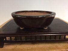 "Dark Glazed Shohin Of Mame Size Tokoname Bonsai Tree Pot By Hattori 3 1/2"""