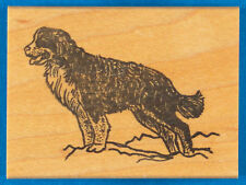 Bernese Mountain Dog Rubber Stamp - Noble Dog Posing - by The Stamp Pad Co.