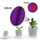 E27 LED Grow Light Lamp Plant Flower Indoor Greenhouse Hydroponic Full Spectrum