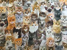 Dekostoff, Katzen, Cats, eng, Breite 140 cm, 1 Meter