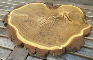 Acacia Tree Slice - For Craft Projects - 470mm x 340mm x 30mm