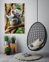 3D Wald Koala M116 Tier Wandaufkleber Wandtattoo Tapeten Wandbild Angelia