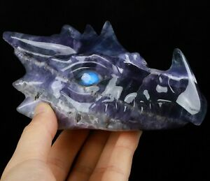 "5.9"" FLUORITE Carved Crystal Dragon Skull with Labradorite Eyes"