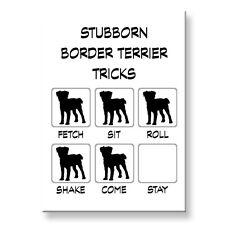Border Terrier Stubborn Tricks Fridge Magnet Steel Case Funny