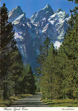 postcard USA Wyoming  Majestic Grand Teton unposted