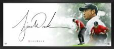"""TIGER WOODS Autographed """"The Show Masterpiece"""" Framed 46"""" x 20"""" Display UDA"""