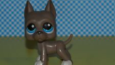 Littlest Pet Shop  Sonderfigur LPS  184