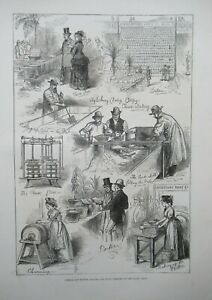 1876 Dairy Show Islington London Cheese and Butter Making & Prizes Antique Print