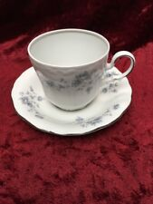 Blue Garland Johann Haviland Bavaria Germany Coffee Cup and Saucer