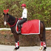 Showquest Christmas Exercise Sheet - Horse Fancy Dress Ride On Santa Exercise Sh