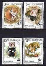 Animaux Rongeurs Bulgarie (23) série complète 4 timbres oblitérés