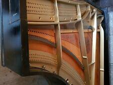 Kaps Flügel Salonflügel 2 m lang Restaurationsobjekt