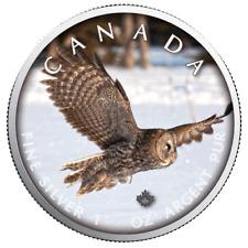 Kanada - 5 Dollar 2019 - Maple Leaf - Wildlife (7.) - Eule - 1 Oz Silber ST