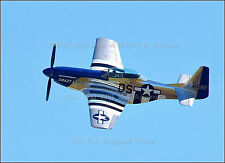 Poster Print: P-51 Mustang Crazy Horse 2, Homestead Air Force Base, 2010