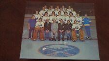 "1973-74 ORIGINAL Buffalo Sabres 8 x 10"" Team Photo  NHL Hockey French Connection"
