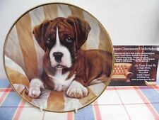 "Danbury Mint Plate by Simon Mendez "" The Look "" The Boxer Dog"