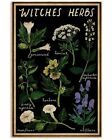 Witches Herbs, Retro Black Witches Herbs Vintage Art Decor Poster Unframed