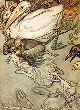 Alice In Wonderland - 8x10 print from 1907 Arthur Rackham  book plate - #2