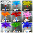Wholesale High Quality ostrich feathers 12-16'inch/30-40cm variety of colors