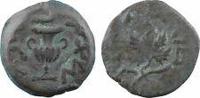 Judée, prutah en bronze, 1ère révolte 68  - 9