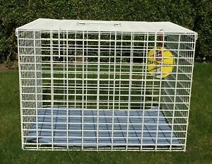 """Extra Large Rectangular Wire Pet Carrier (22"""" x 16"""" x 16"""") Cat Dog Cage / Crate"""