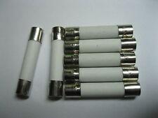 100 Pcs Fast Blow Ceramic Fuses 6A 250V 6mm x 30mm 6x30mm New