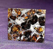 Meteorit Pallasit Seymchan geätzt Olivine teils transluscent 30x25x2,1mm 7,5g 陨石