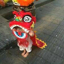 Southern Lion Mascot Lion Dance Wool Costume Kids Dress Chinese Folk Halloween