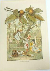 Indian Summer Vintage Print Lot of 2 Duplicate Children Botanical Dog Baby Fence